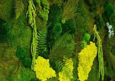 Pan de mur végétal avec végétaux dans un camaïeu de verts