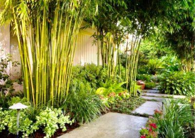 Allée descendante en pierre avec bambous sur le côté