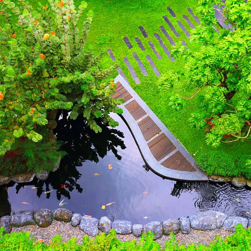 Aménagement d'un bassin esprit japonais avec arbres autour