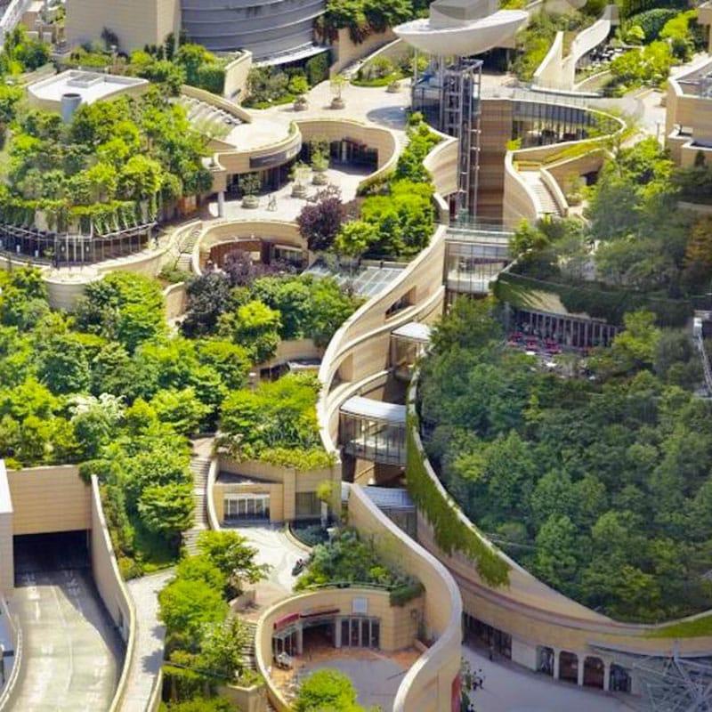 Vue aérienne de l'aménagement végétal d'un toit d'immeuble