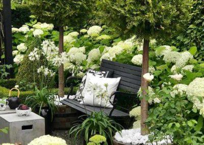 Conception d'un jardin contemporain focus sur un banc entouré de végétation