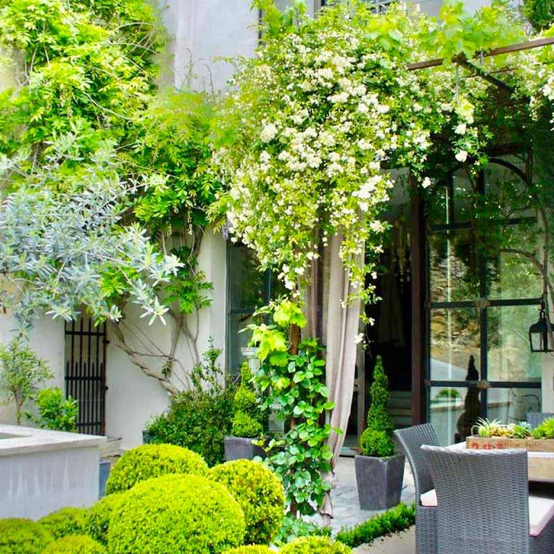 Aménagement d'une cour intérieure avec des végétaux