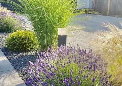 Conception d'entrée de maison moderne avec allée de plante
