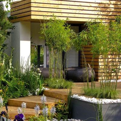 Création entrée de maison décor moderne avce escalier en bois végétation de chaque côté bambous et fleurs