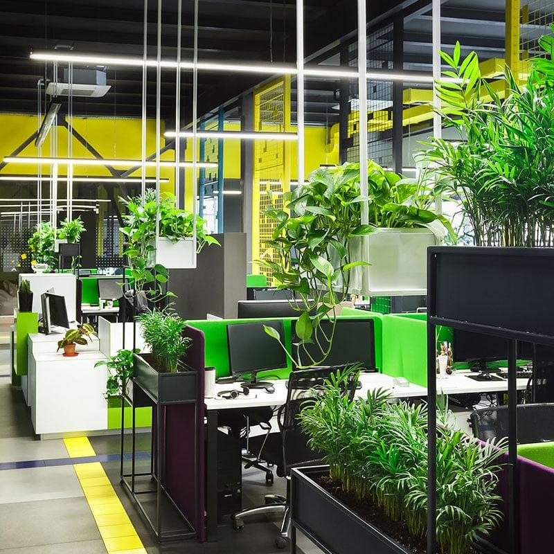 Ensemble de bureaux végétalisés à l'aide de bacs à plantes vertes en suspension