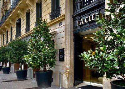 Rangée d'arbes en pots devant un bâtiment à Paris