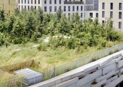 Petite forêt avec chemin de promenade sur la toiture d'un bâtiment