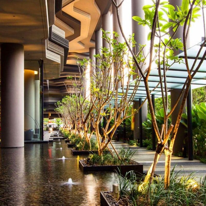 Création hall de bureau extérieur avec plan d'eau et arbres éclairés