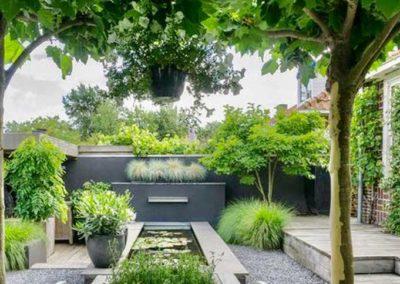 Jardin contemporain à l'anglaise