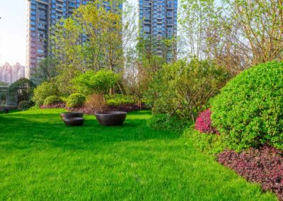 Jardin épuré et moderne immeuble en arrière-plan