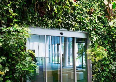 Mur végétal stabilisé autour de la porte d'entre d'un breau