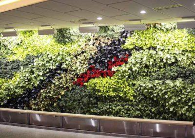 Mur végétal intérieur de hall de bureau
