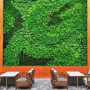 Grand mur végétal intérieur encadré de bois avec chaises et tables devant