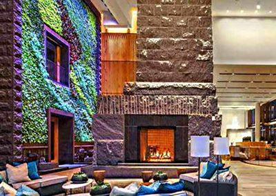 Mur végétal coloré à l'interieur d'un hall