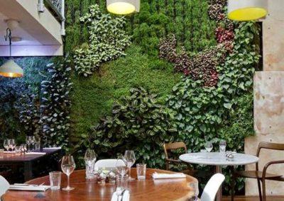 Mur végétal intérieur d'un espace repas