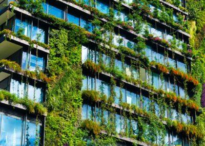 Végétalisation de la façade d'un immeuble moderne parisien