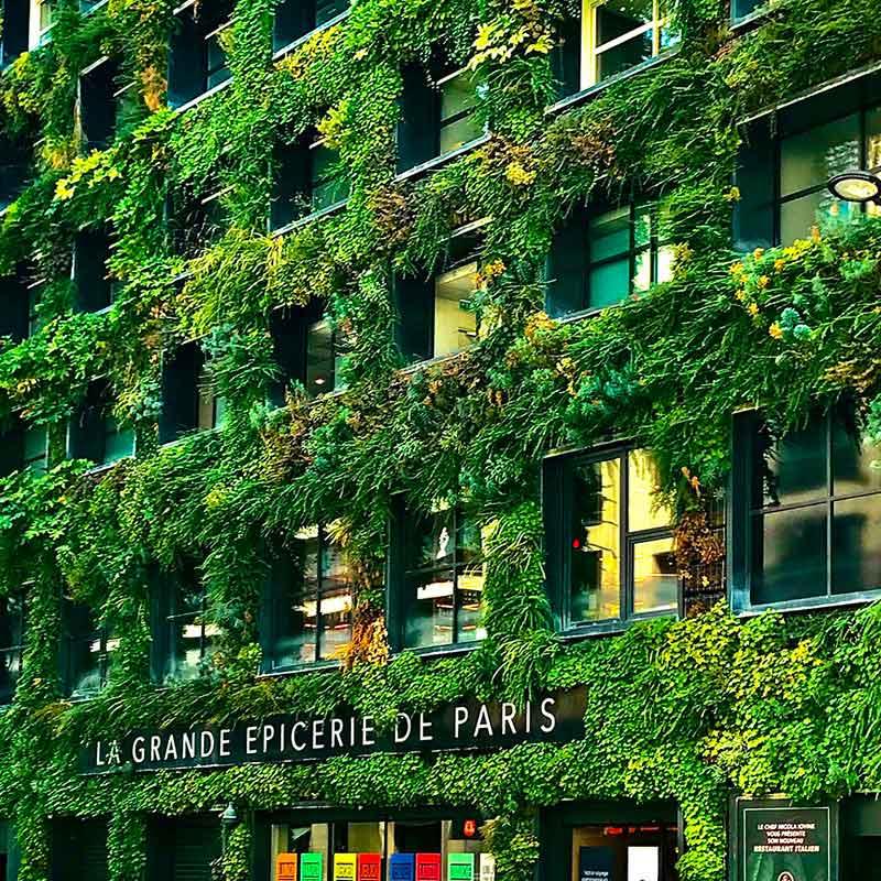 Façade mur végétal de l'immeuble de la grande épicerie de Paris