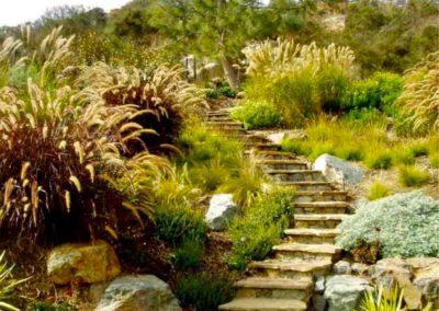 Réalisation d'un escalier sillonnant en pierre entouré de végétation