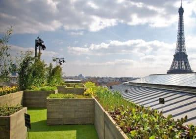 Réalisation d'un espace vert avec bac à plantes sur la toiture d'un bâtiment vue sur la Tour Eiffel
