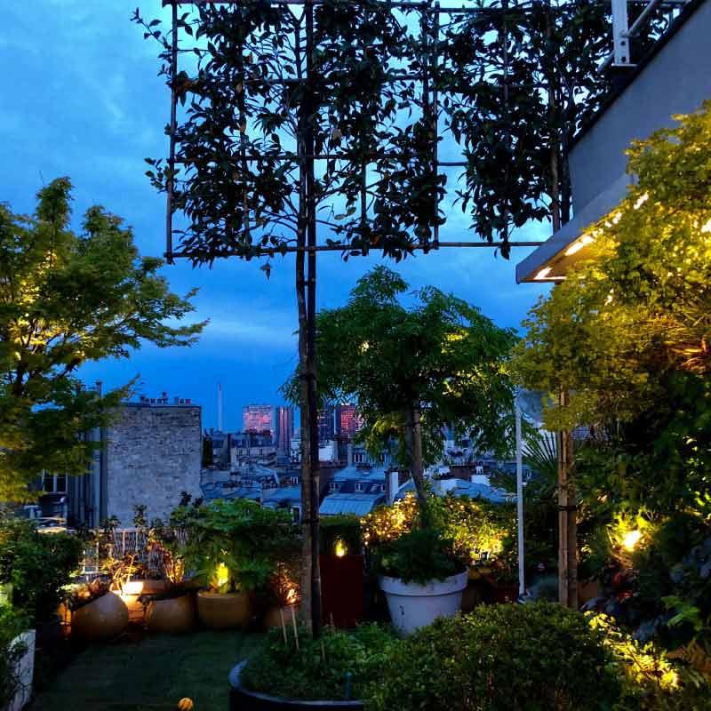 Toit-terrasse fin de journée illuminant arbres et arbustes vue sur les toits de ville